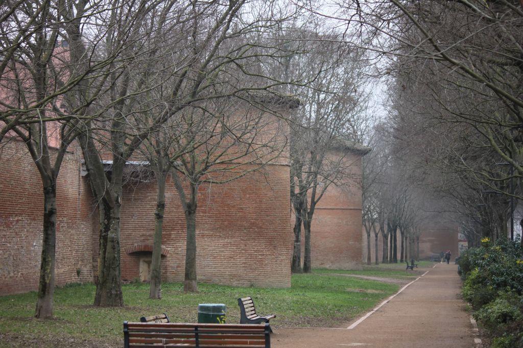 http://www.toulouse-brique.com/photos/facades/muraille-hiver.JPG